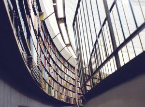 Nach dem Bereitstellen der Inhalte der Bibliothek ist es wichtig, die Dokumente einer breiten Öffentlichkeit zugänglich zu machen. Es gibt mehrere Plattformen, welche eine einfache und wirksame Verbreitung der digitalen Inhalte ermöglichen. (#1)