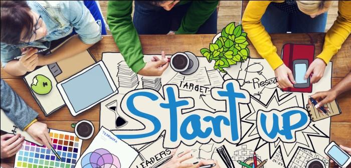 Startup Jobs: Ausbildung, Jobchancen, Trends