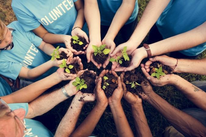 Wer weniger mit Menschen, sondern lieber in der Natur arbeiten möchte, der wird ebenso fündig. Auf der Suche nach Entwicklungshilfe Jobs finden sich zahlreiche Angebote in Richtung Umwelt und Natur: Wie wäre es bespielsweise mit Bäumen pflanzen oder Brunnen bauen? (#3)
