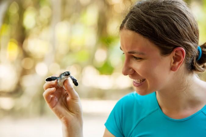 """Ein NGO Projektbeispiel in Brasilien: Hier werden """"Hawksbill Sea Turtles"""" (deutsch: Karettschildkroeten) gerettet. (#5)"""